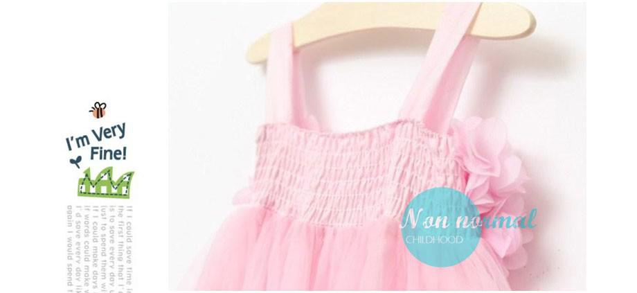 Girls dress summer 2014 Korean dress chiffon (8)
