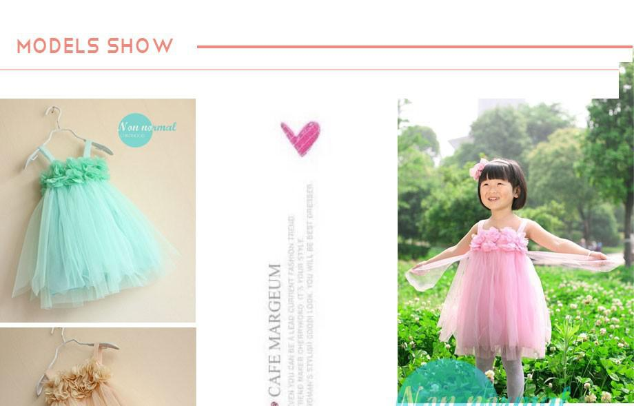Girls dress summer 2014 Korean dress chiffon (12)